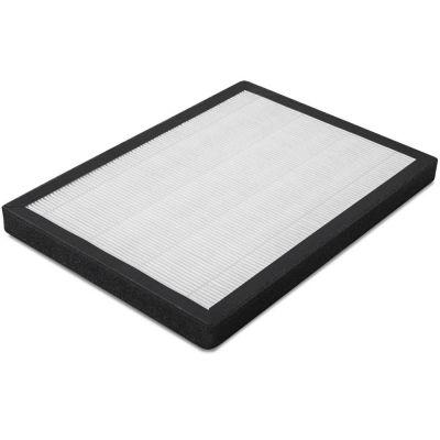 HEPA-filter voor AirgoClean 100 E